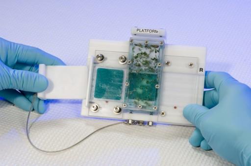 Food Tray Changeout Mechanism - Image: NASA / Dominic Hart